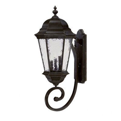 Telfair 3-Light Outdoor Sconce Finish: Marbleized Mahogany