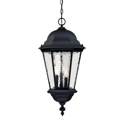 Telfair 3-Light Outdoor Hanging Lantern Finish: Matte Black