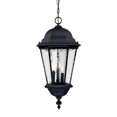Telfair 3-Light Outdoor Hanging Lantern Finish: Matte Black