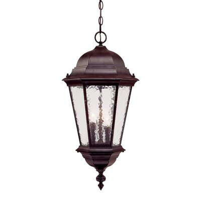 Telfair 3-Light Outdoor Hanging Lantern Finish: Marbleized Mahogany