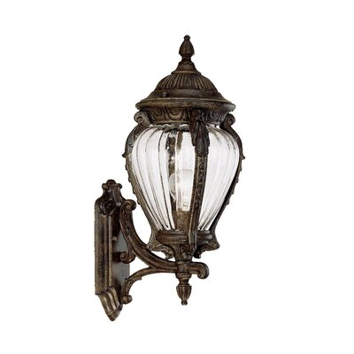 Nottingham 1-Light Outdoor Sconce Finish: Black Coral