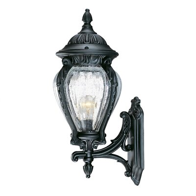 Nottingham 1-Light Outdoor Sconce Finish: Matte Black