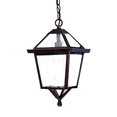 Charleston 1-Light Outdoor Hanging Lantern