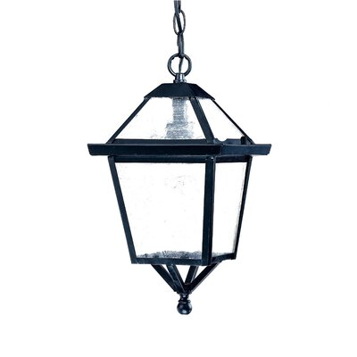 Charleston 1-Light Outdoor Hanging Lantern Finish: Matte Black