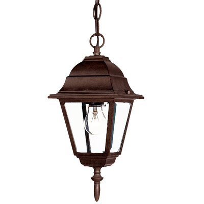 Builder's Choice 1-Light Outdoor Hanging Lantern Finish: Burled Walnut