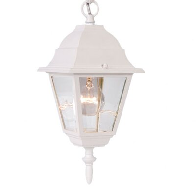 Builder's Choice 1-Light Outdoor Hanging Lantern Finish: Textured White