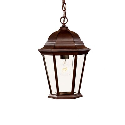 Richmond 1-Light Outdoor Hanging Lantern