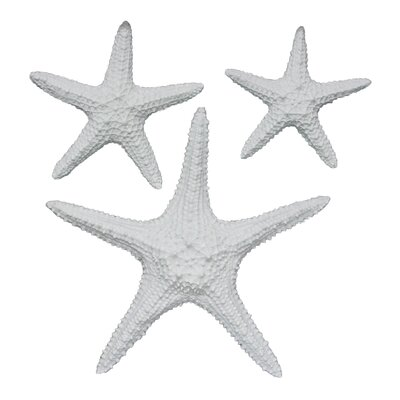 Yelton 3 Piece Starfish Wall Décor Set Color: White