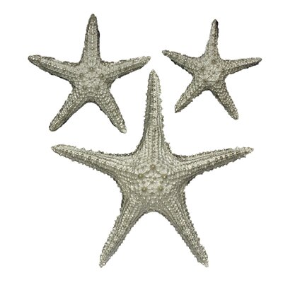 Yelton 3 Piece Starfish Wall Décor Set Color: Silver