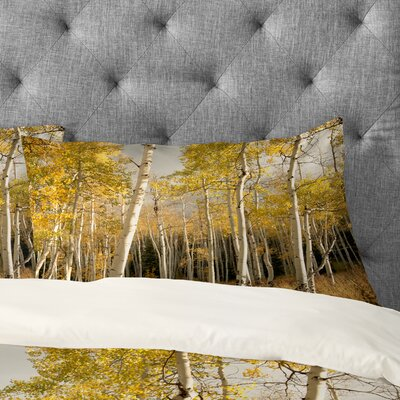 Bird Wanna Whistle Golden Aspen Pillowcase Size: King
