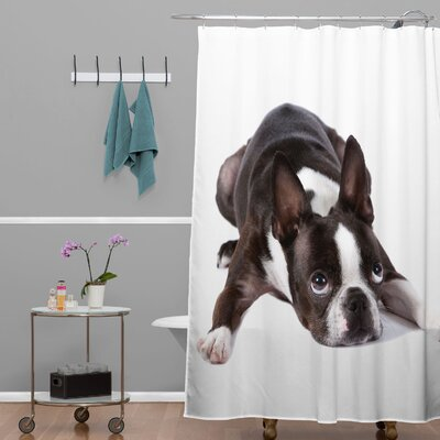 Susan Goddard Boston Terrier Shower Curtain