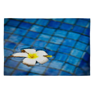 Bird Wanna Whistle Floating Flower Novelty Rug Rug Size: 2 x 3