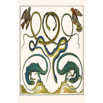 'Serpents Lizards and Birds' by Albertus Seba Graphic Art 0-587-29717-4C2436