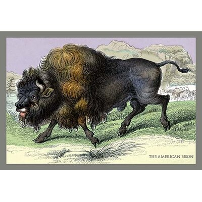 'The American Bison' by John Stewart Painting Print