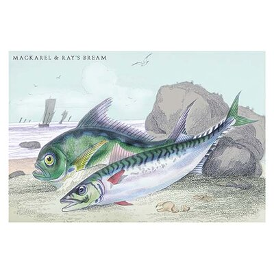Mackarel and Ray's Bream by Robert Hamilton Painting Print 0-587-09292-0C2842