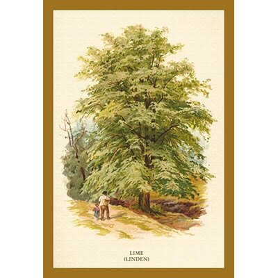 'The Lime (Linden)' by W.H.J. Boot Painting Print 0-587-17644-xC2030