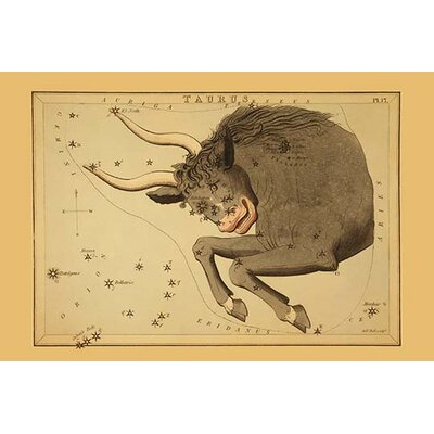 'Taurus the Bull' by Aspin Jehosaphat Graphic Art Size: 66