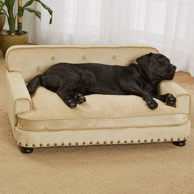 Lolita Library Dog Sofa