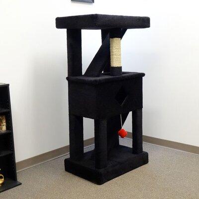 58 Play Gym Cat Condo Color: Black