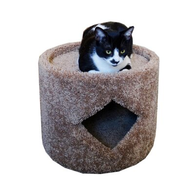 13 Premier Cat Condo Color: Brown
