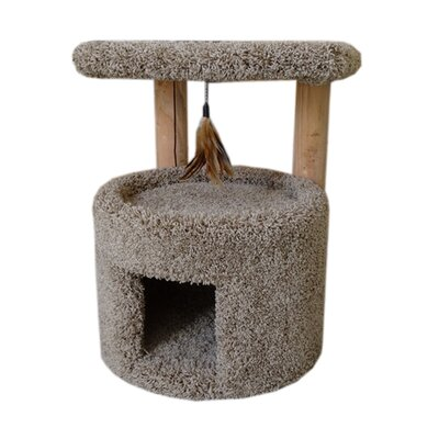 24 Premier Cat Perch Color: Brown