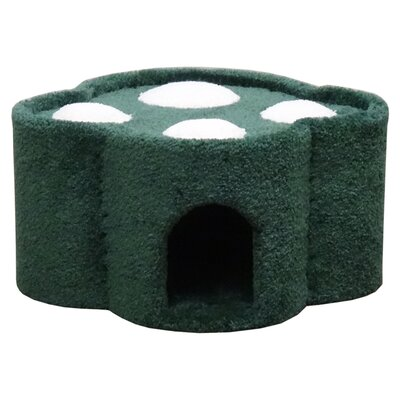 14 Premier Paw Print Condo Color: Green