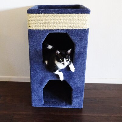 31 Premier Double Cat Condo Color: Blue