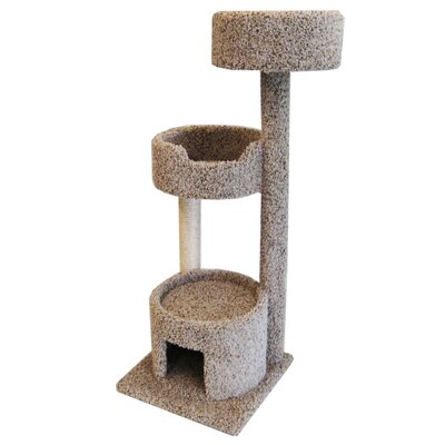 52 Cat Tree Color: Brown