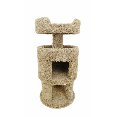 32 Premier Contemporary Cat Condo Color: Brown