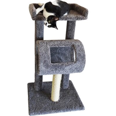 42 Premier Climber Cat Tree Color: Gray