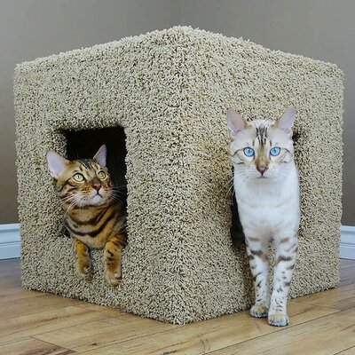 20 Premier Pet Hiding Cube Cat Condo Color: Beige