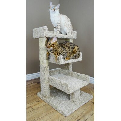 32 Premier Triple Cat Perch Color: Black