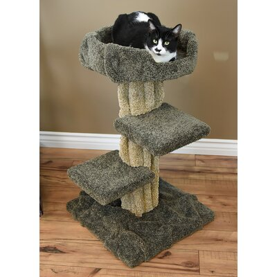 33 New Premier Cat Condo Color: Green