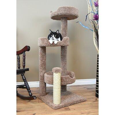 50 New Cat Condo Color: Brown