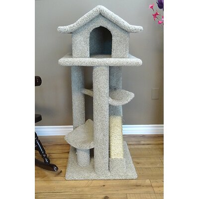 46 Premier Cat Pagoda Tree Color: Beige