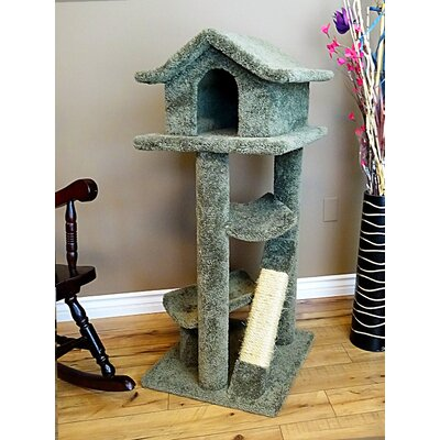 46 Premier Cat Pagoda Tree Color: Green
