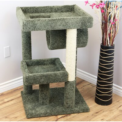 38 Premier Cat Perch Color: Green
