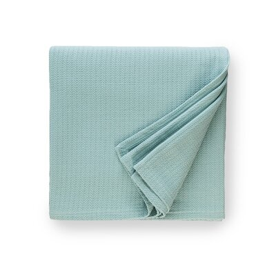 Grant Cotton Blanket Size: Twin, Color: Aqua