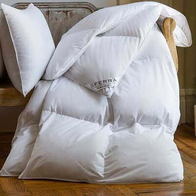 Cornwall Heavy Weight Down Duvet Insert  Size: Queen