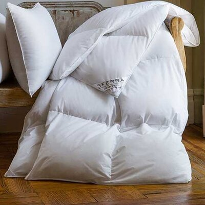 Cornwall Lightweight Down Duvet Insert  Size: Queen