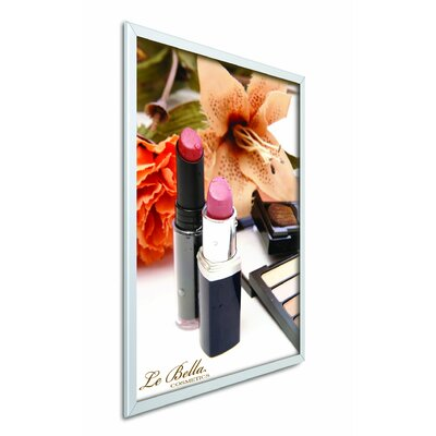 EasyOpen SnapFrame Graphic Size: 24 x 36, Frame Color: Satin Silver, Lens Color: Clear