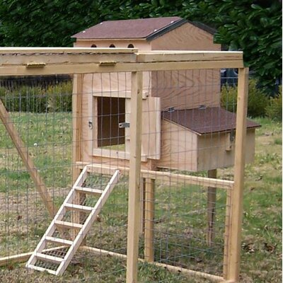 Creative Coops Small Hen House Starter Kit at Sears.com
