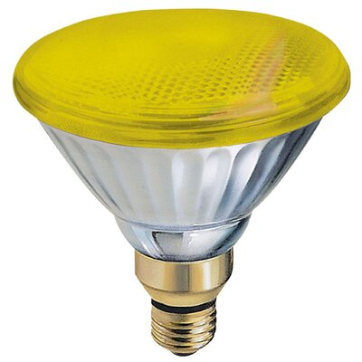 85W Yellow 120-Volt Light Bulb