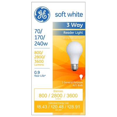 70W Incandescent Light Bulb