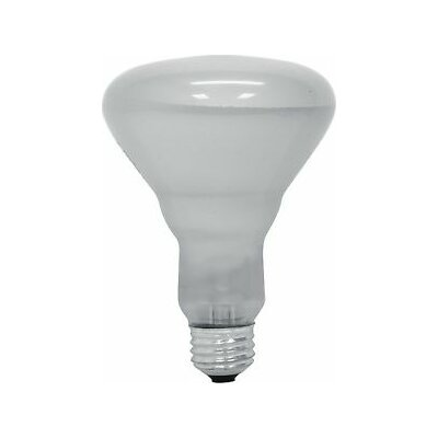 45W 120-Volt (2600K) Light Bulb