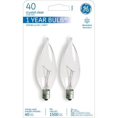 40W 120-Volt (2500K) Incandescent Light Bulb