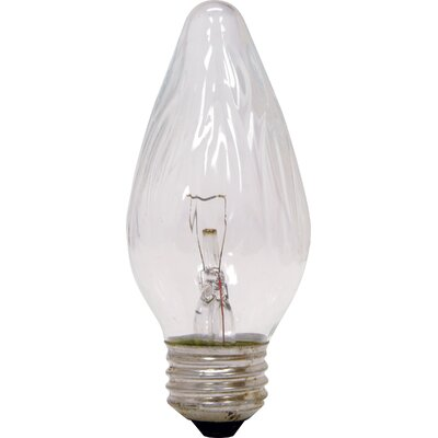 25W 120-Volt (2500K) Incandescent Light Bulb (Pack of 2)