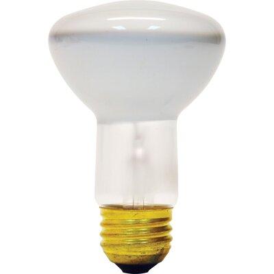 45W 120-Volt Light Bulb (Pack of 2)