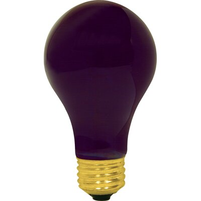60W Purple 120-Volt Light Bulb