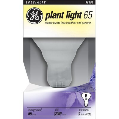 Frosted E26/Medium Light Bulb Wattage: 65W